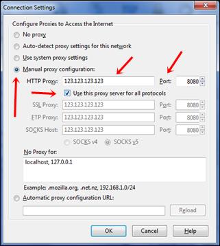 add proxy manually in firefox