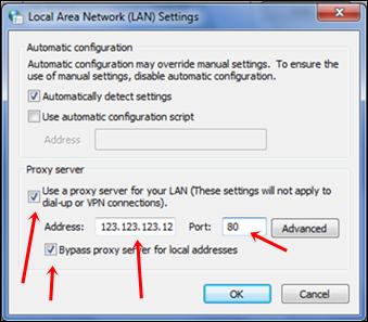 LAN add proxy settings
