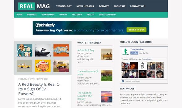 Template Blog Seo