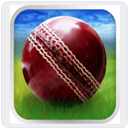 Cricket Worldcup Fever Android Game