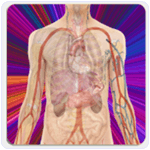 Anatomy Guide Android App