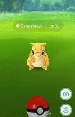 Kamera dari pokemon pergi