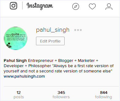 instagram profile information