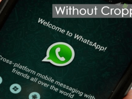 How To Set Whatsapp Profile Picture Without Cropping
