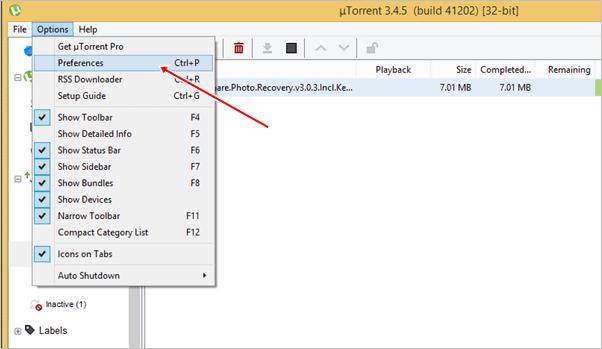 utorrent preferences settings